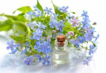 aromatherapy for snoring