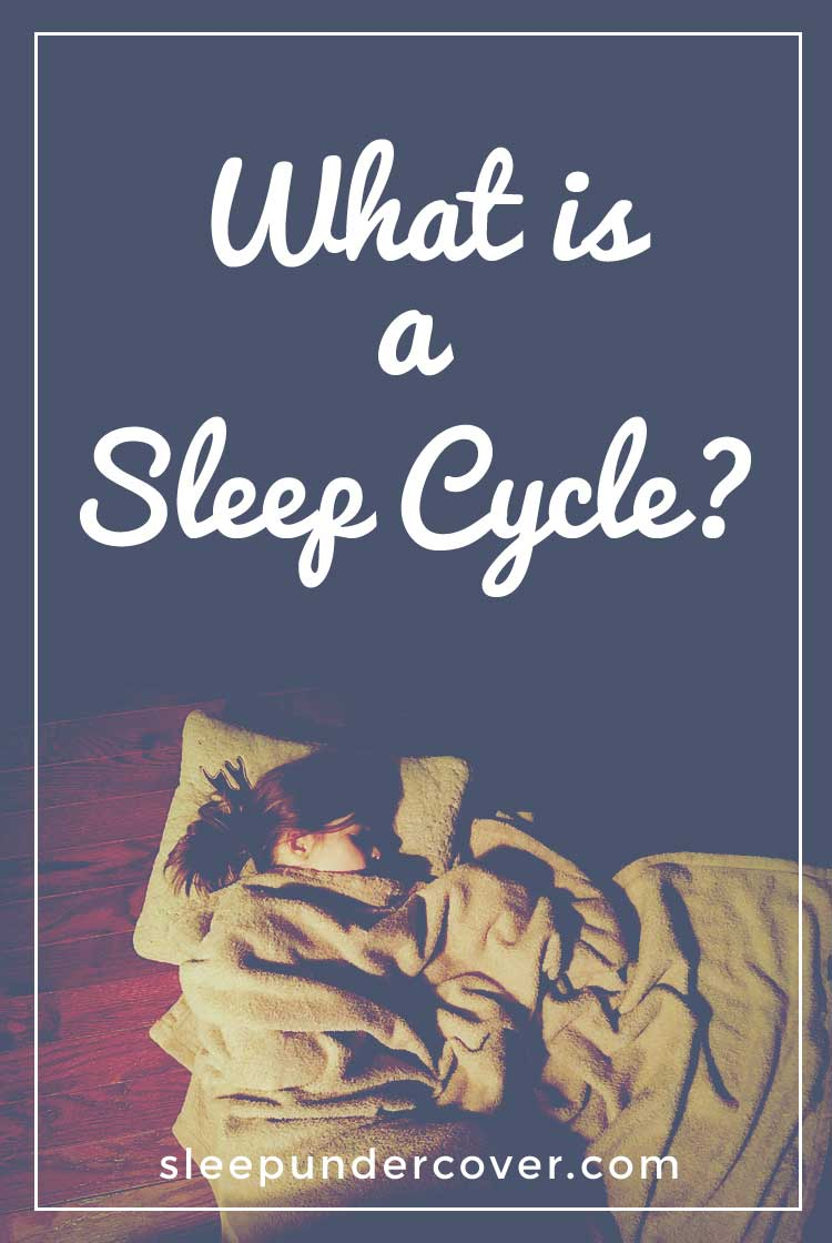 - WHAT IS A SLEEP CYCLE ? - As scientists continue to study sleep cycles, they've learned that the  whole business of sleeping is much more complicated.